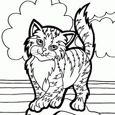 Resultado de imagen para imagenes de dibujos de GATOS