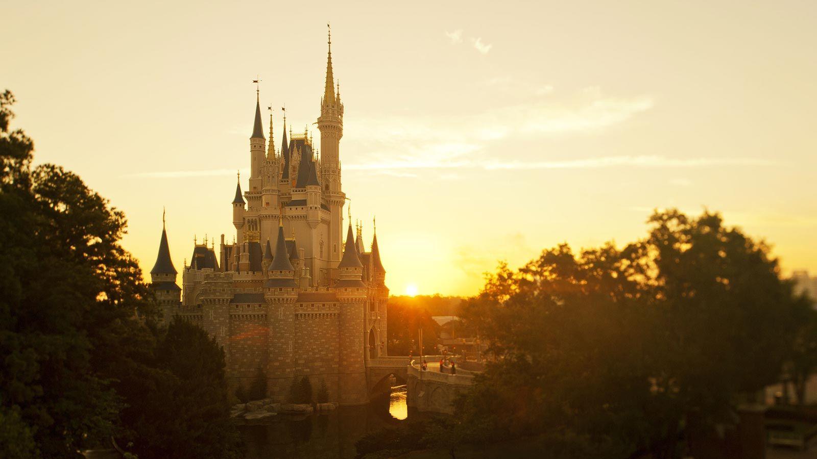 Disney Vacations Walt disney world vacations, Disney
