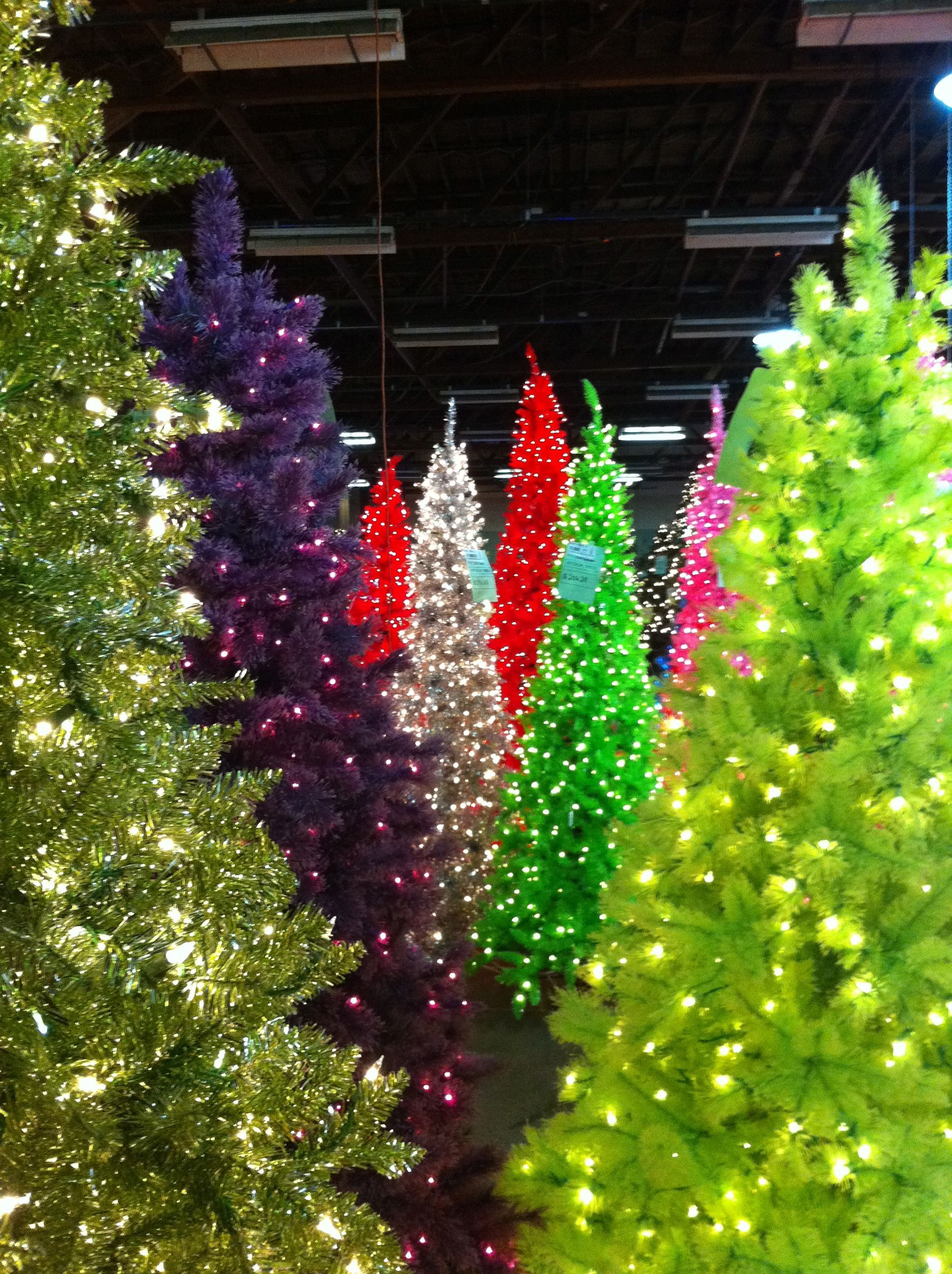 colorful trees | Christmas | Pinterest | Colorful trees and ...
