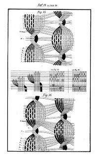 Finsterbusch R. Figuren Dreher (Gauze book) (With images