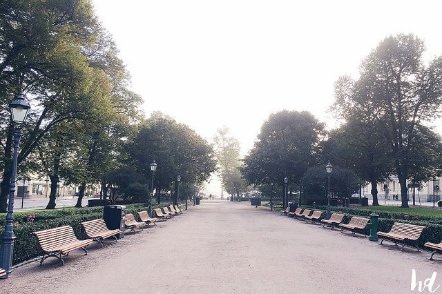 Happy days: Autumn morning in Esplanadi, Helsinki