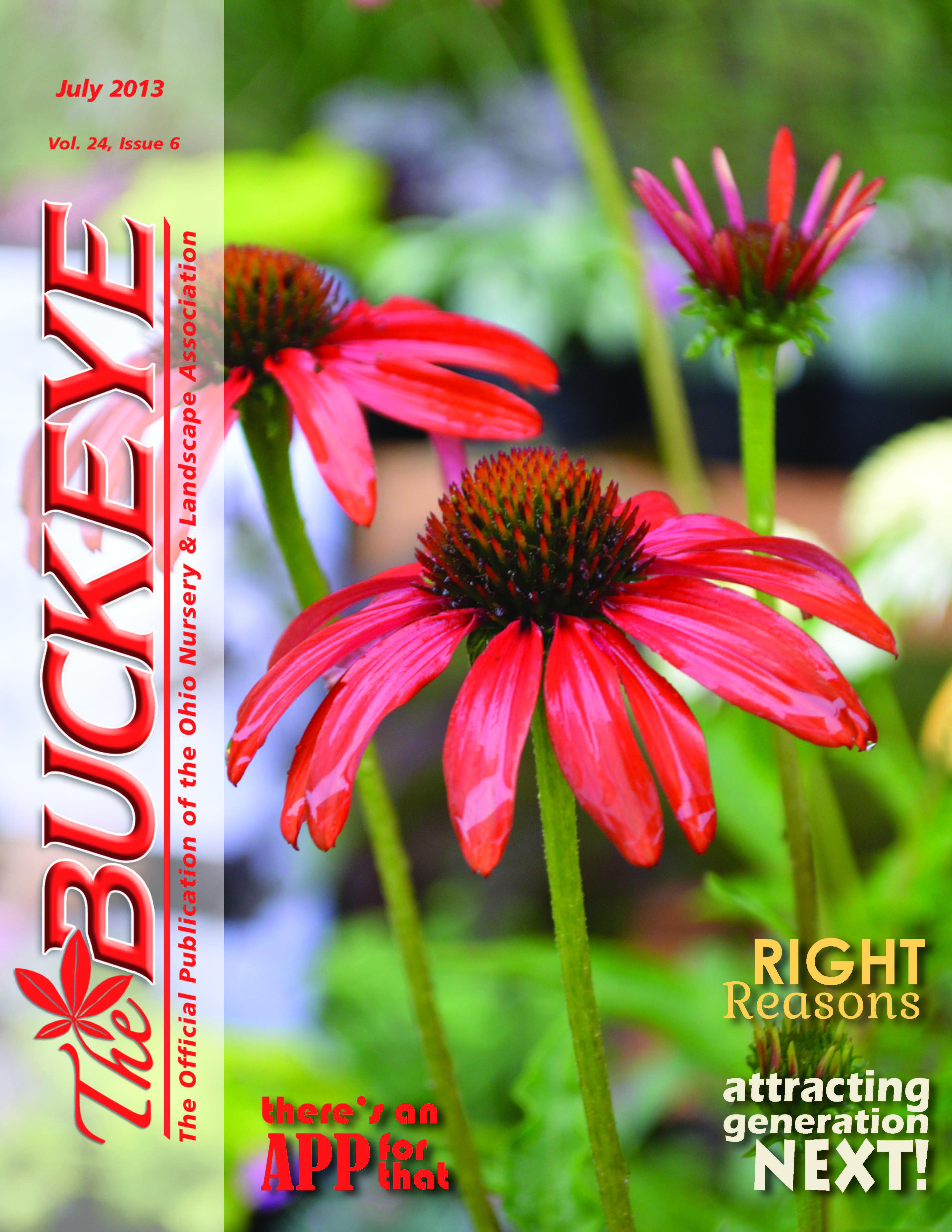 The Buckeye July 2013 Volume 24 Issue 6 Landscape Ohio Buckeyes Ohio