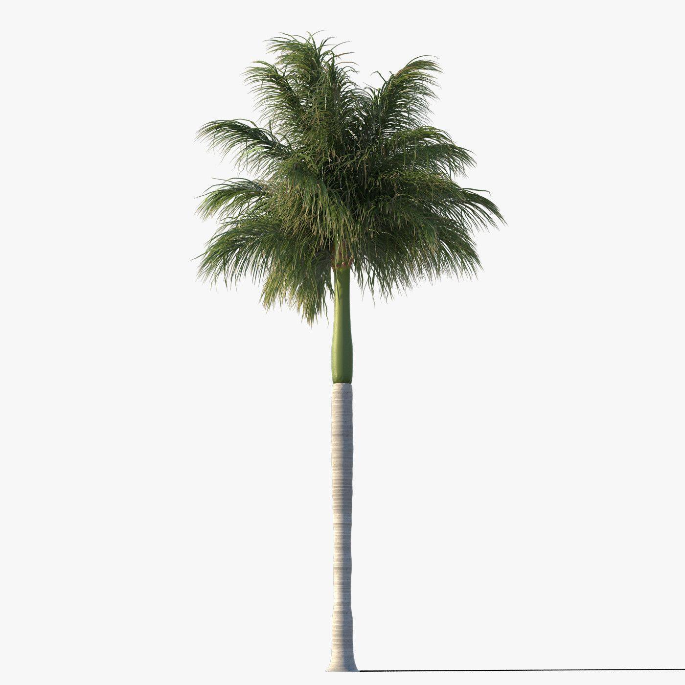 palmier 3d autocad