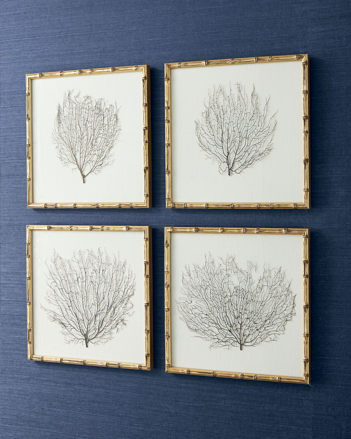 Framed Sea Fans, 4-Piece Set | Fans, Top designers and Free shipping