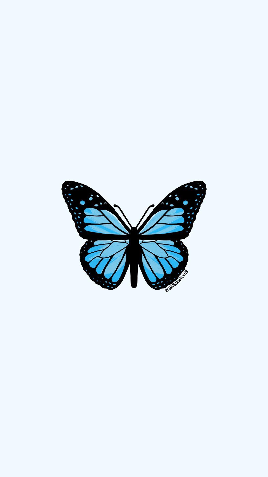 Pastel Blue Butterfly Cute Aesthetic Butterfly Wallpaper Novocom Top