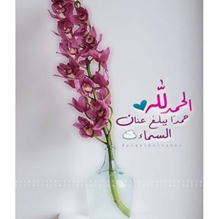 حساب ديني الحمد الله Quran Verses Note To Self Islam