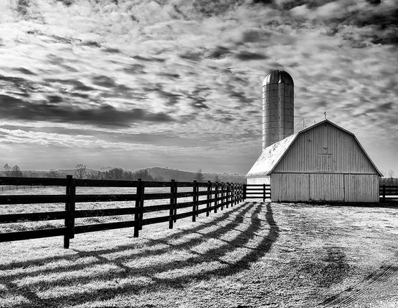 65da4f070f0 Black   White Farm Photo Barn Photo Farm Poster Printable Wall Art  Landscape Print Nature Monochrome
