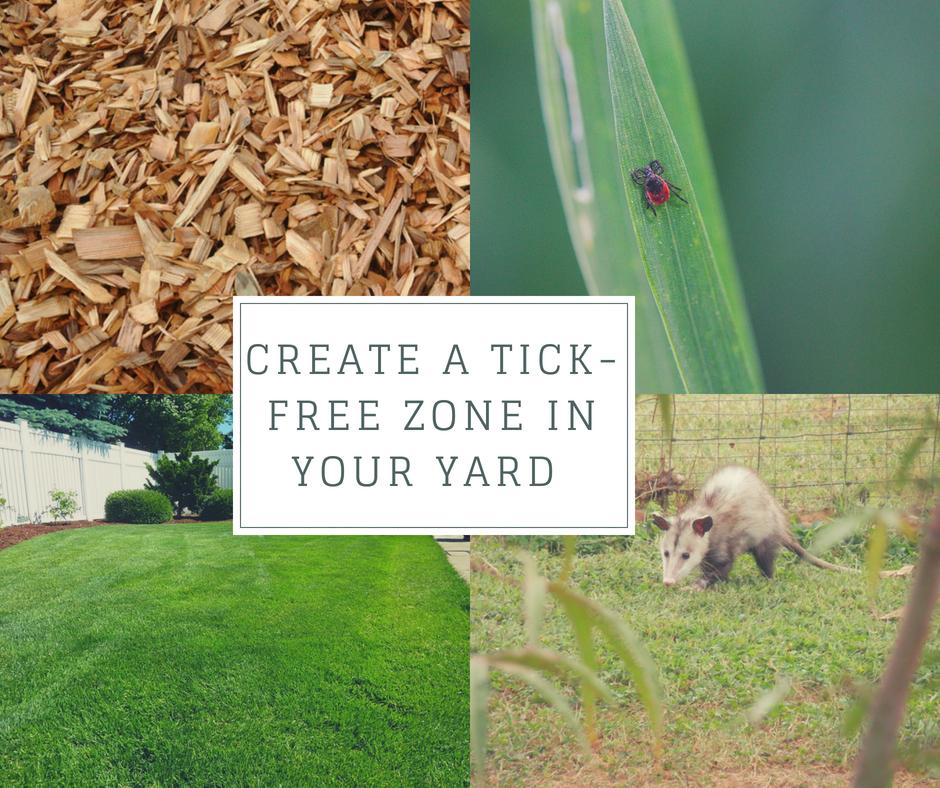 Create a Ticksafe Zone in your Yard Yard, Ticks, Bushes