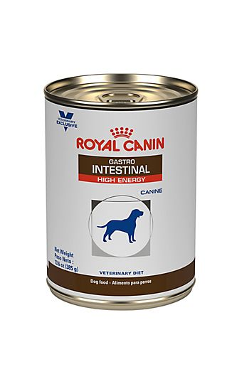 Gastrointestinal Gi Cat And Dog Food For Healthy Digestion Royal Canin Dog Food Recipes Canned Dog Food Dry Dog Food