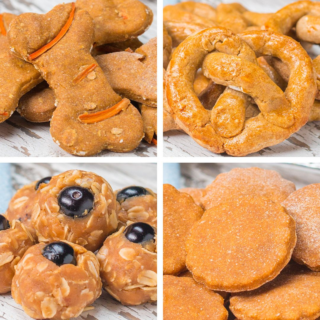 You Can Make Healthy Homemade Dog Treats For Your