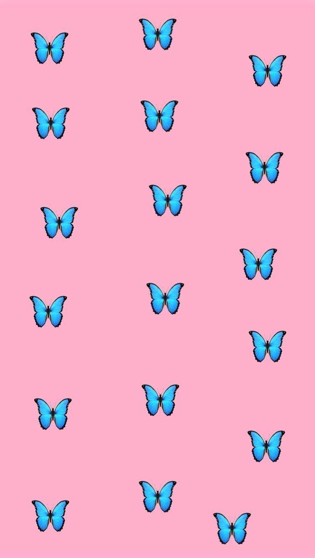 Fondos De Pantalla Butterfly Wallpaper Iphone Iphone Wallpaper