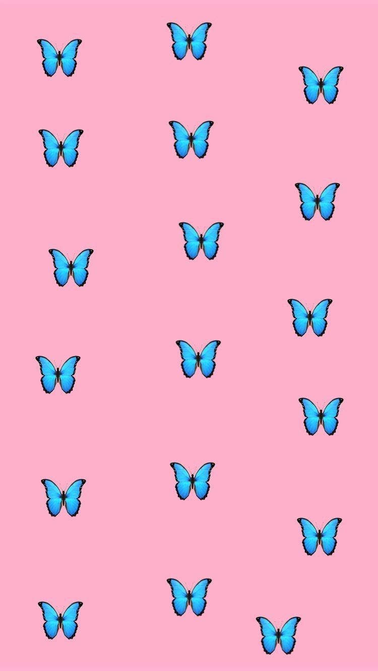 Aesthetic Vsco Iphone Wallpaper Butterfly