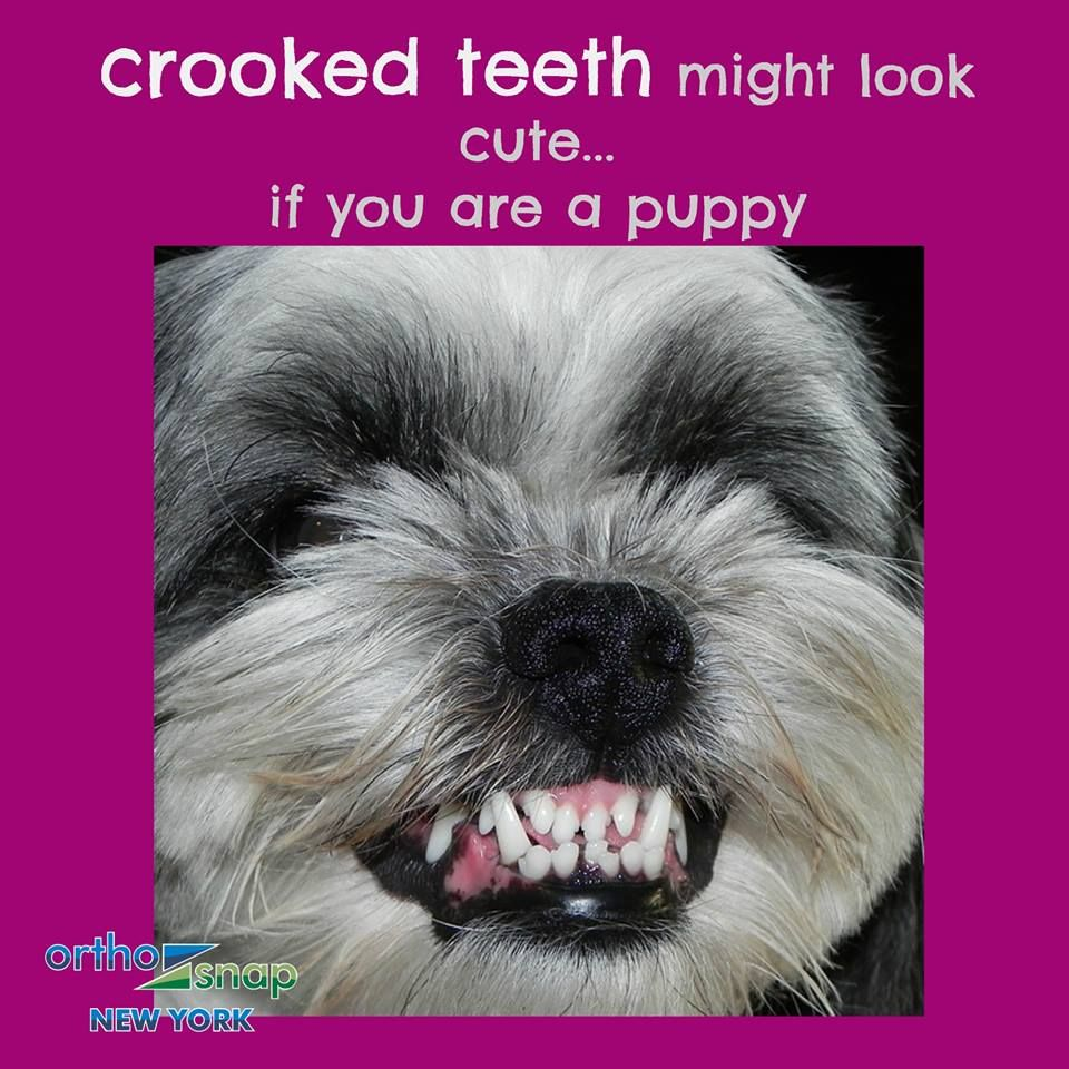 NOW you can StraightenYourTeeth without unsightly
