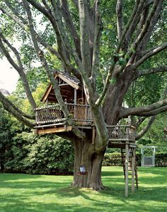 A fabulous treehouse designed by Jeanie & Dave Stiles for their children.