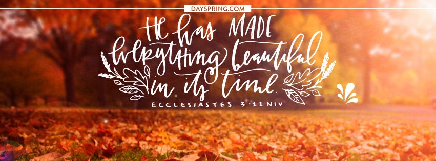 4 Facebook Cover Photos to Spice Up Your Profile for Fall