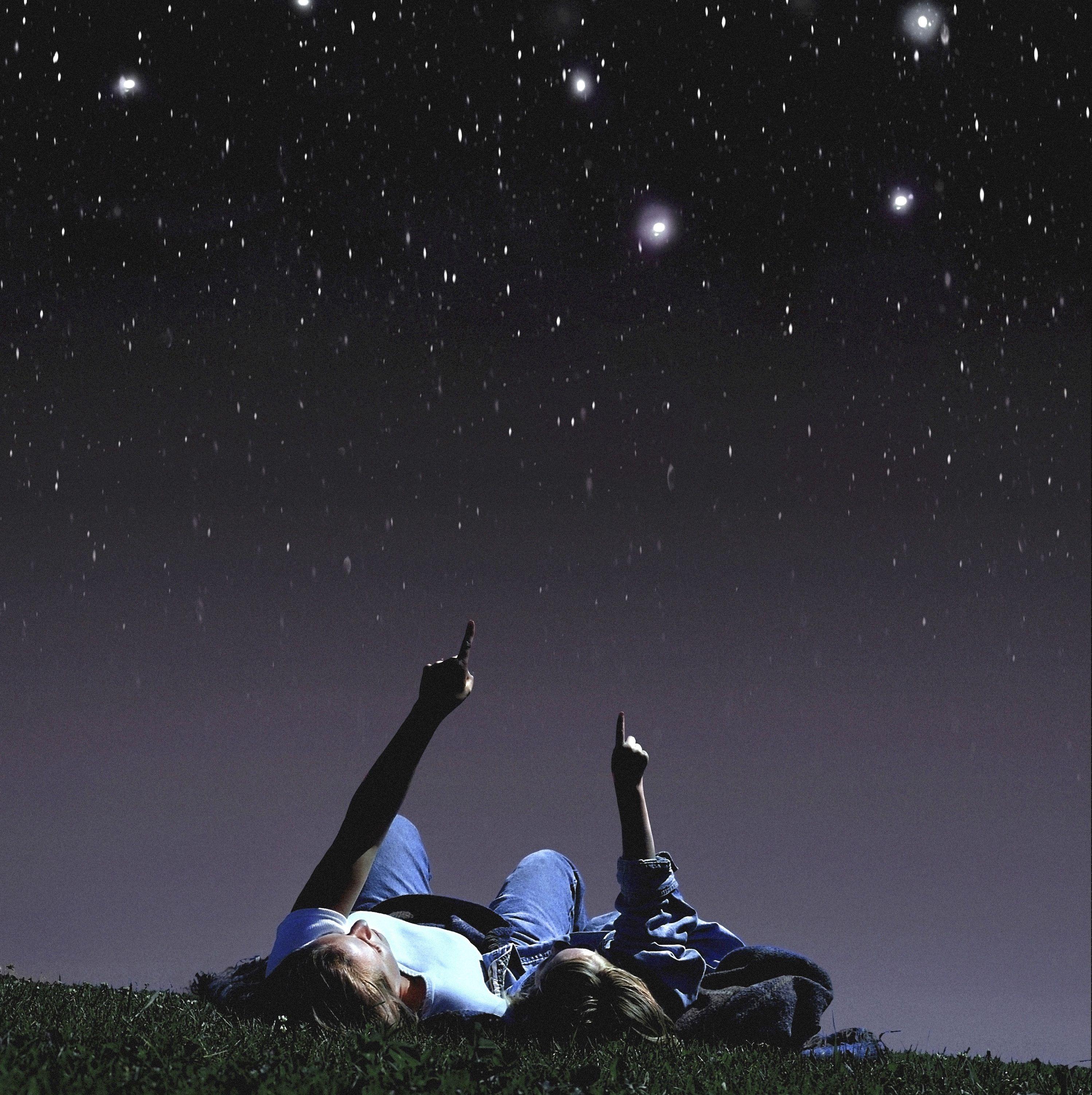 обои смотрят на звезды лежа в траве фото животные имеют общие