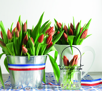 You will find the most beautiful Dutch flowers at Jumbo!