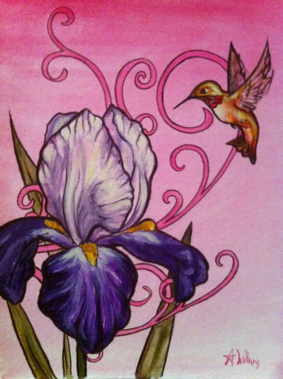 Hummingbirds with iris flower pictures hummingbird with iris by hummingbird with iris izmirmasajfo