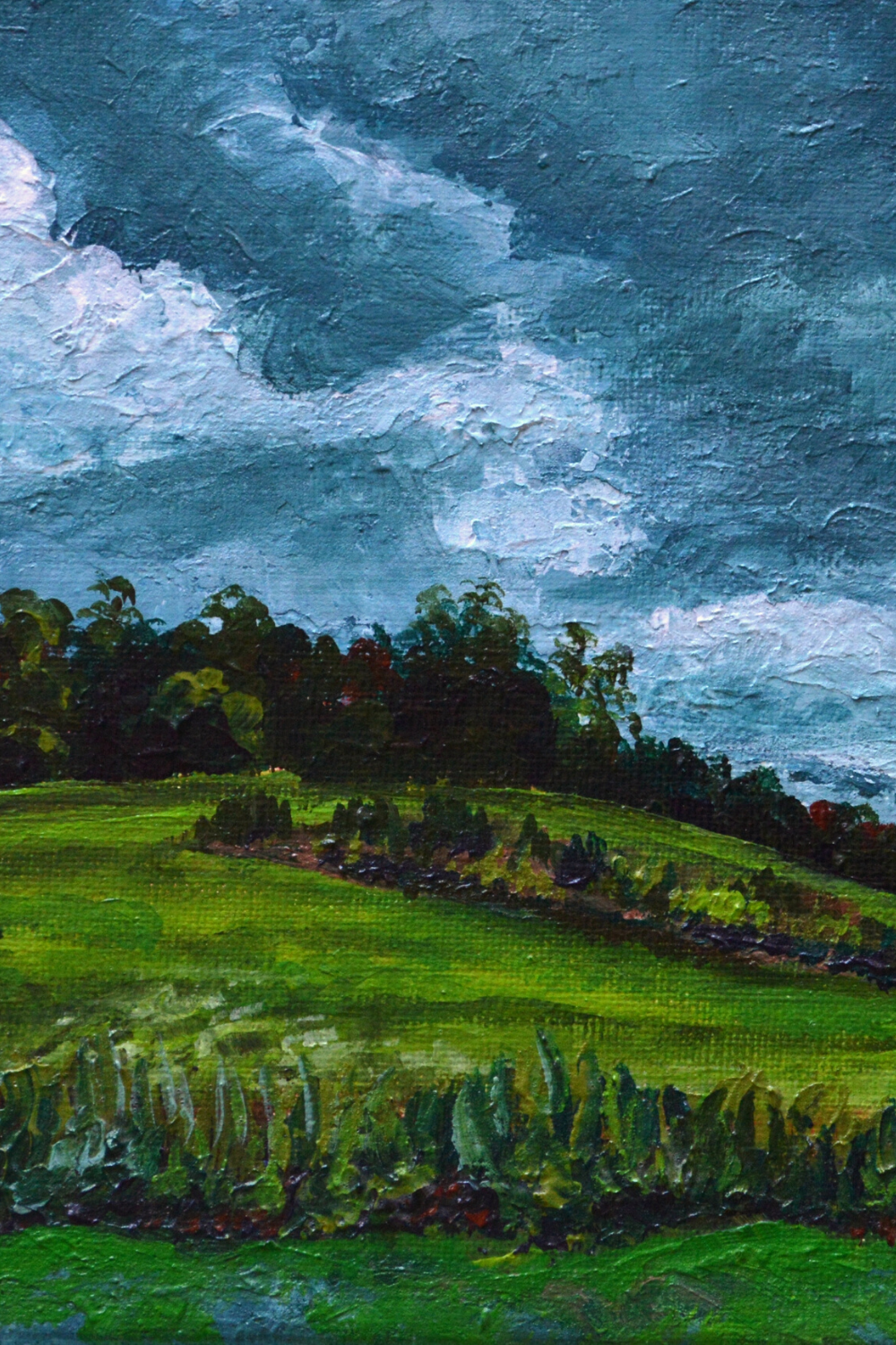 I create beautiful, original paintings for your home. Colorful landscapes are my favorite along with flower paintings and commissions. Most of my wall art canvas contains trees, oceans, beaches, flowers, lakes, and other colorful landscapes. I offer original paintings and fine art prints of my work. #landscapepainting #treeart #natureart #farmhousedecor #etsy #landscape #stormpainting #farmfields #wildflower #originalart #homedecor #oilpainting #canvaswallart