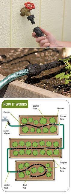 Alternative Gardning: Easy garden watering