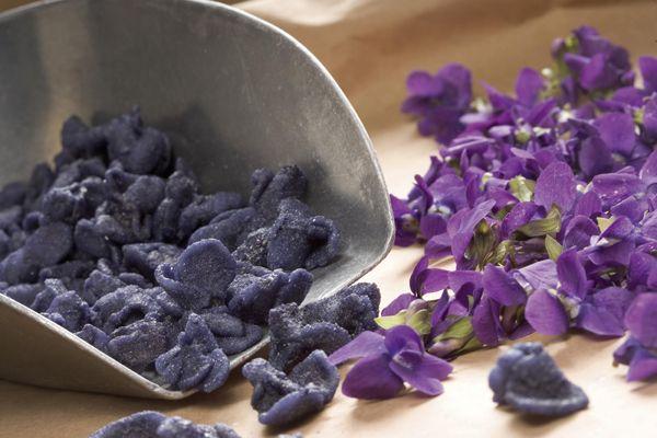 La Violette Fleur Imperiale Fleur D Amour Morceaux De Vie