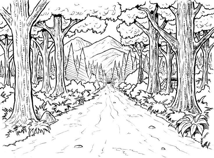 Wald Hintergrund Malseite | Im folgenden werden zwei weitere ...