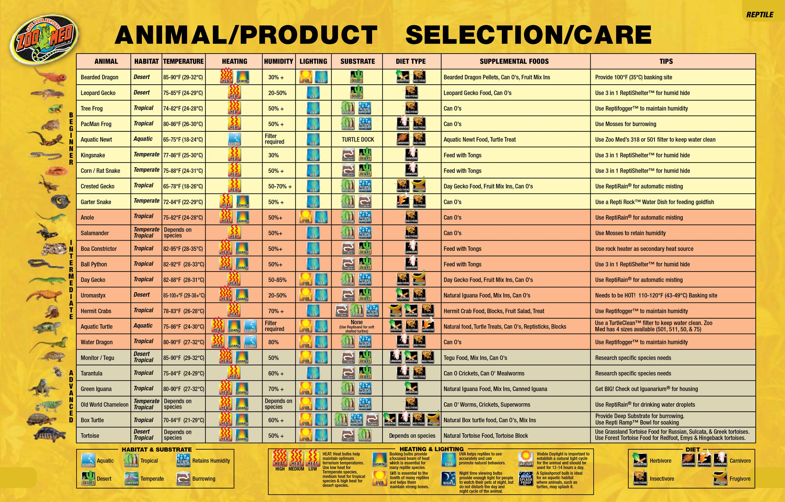 Bearded Dragon Color Chart Product Selection Chart