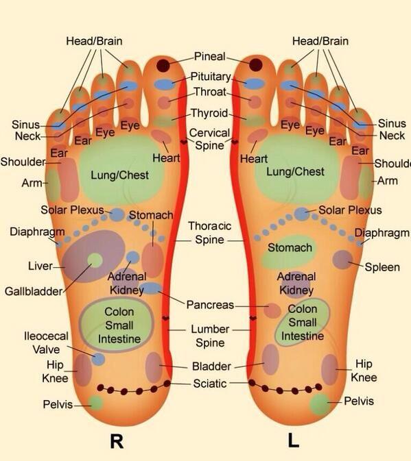 Tatiana M Newton on | Foot reflexology, Reflexology ...