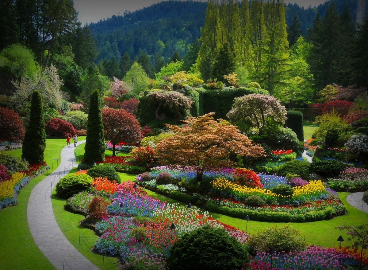 The Butchart Gardens Over 100 Years in Bloom Vancouver