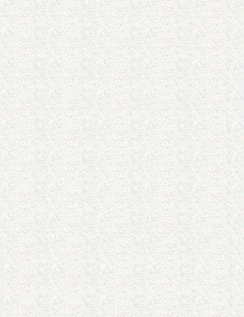 White granite premium cardstock 85x11 500pack bulk paper white granite premium cardstock 85x11 500pack reheart Gallery