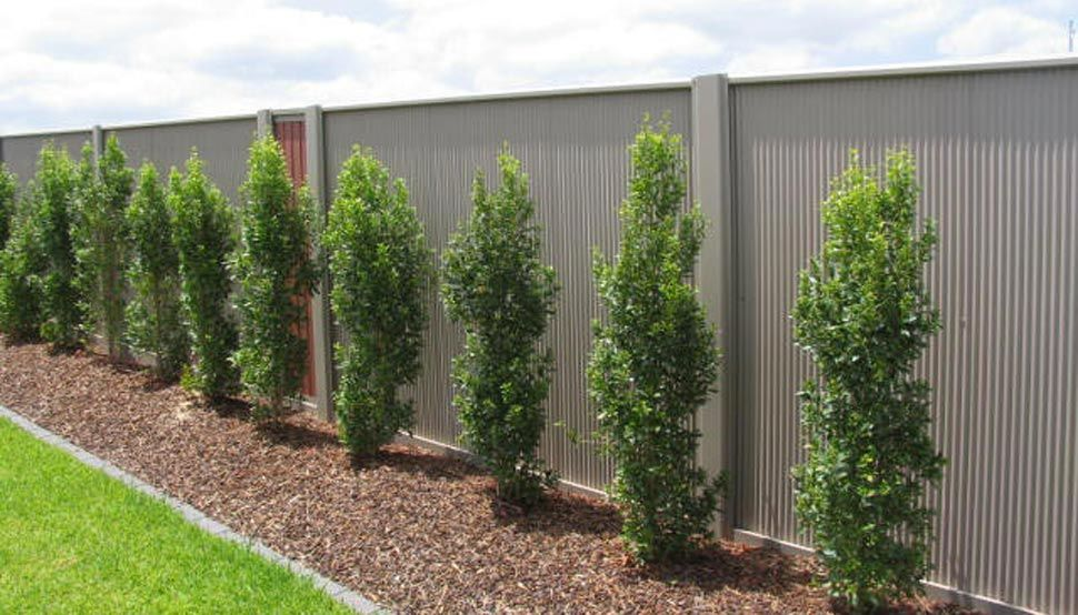 Fencing Made From Colorbond 174 Steel Bluescope Steel