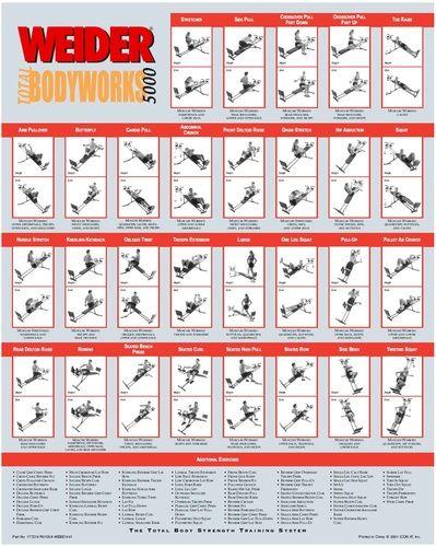 Weider total bodyworks exercise chart google search also gym pdf exercises pinterest rh