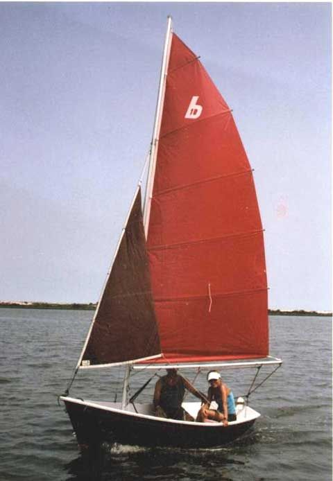 Sunflower Sailboat Replacement Sail | Gardening: Flower and