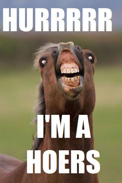Ermahgerd Kernterky Derby Kentuckyderby Animals Funny Horse
