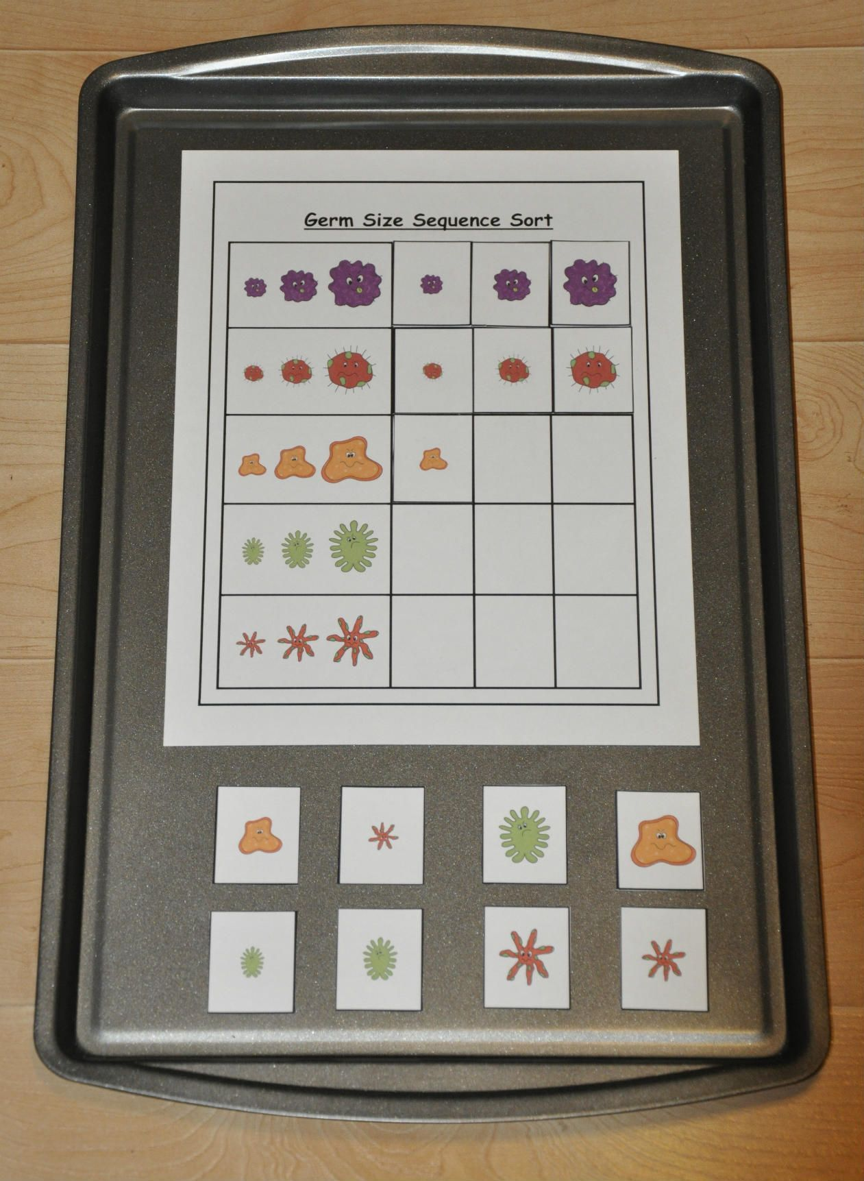 More Germs Sequence Germs By Size Cookie Sheet Activity