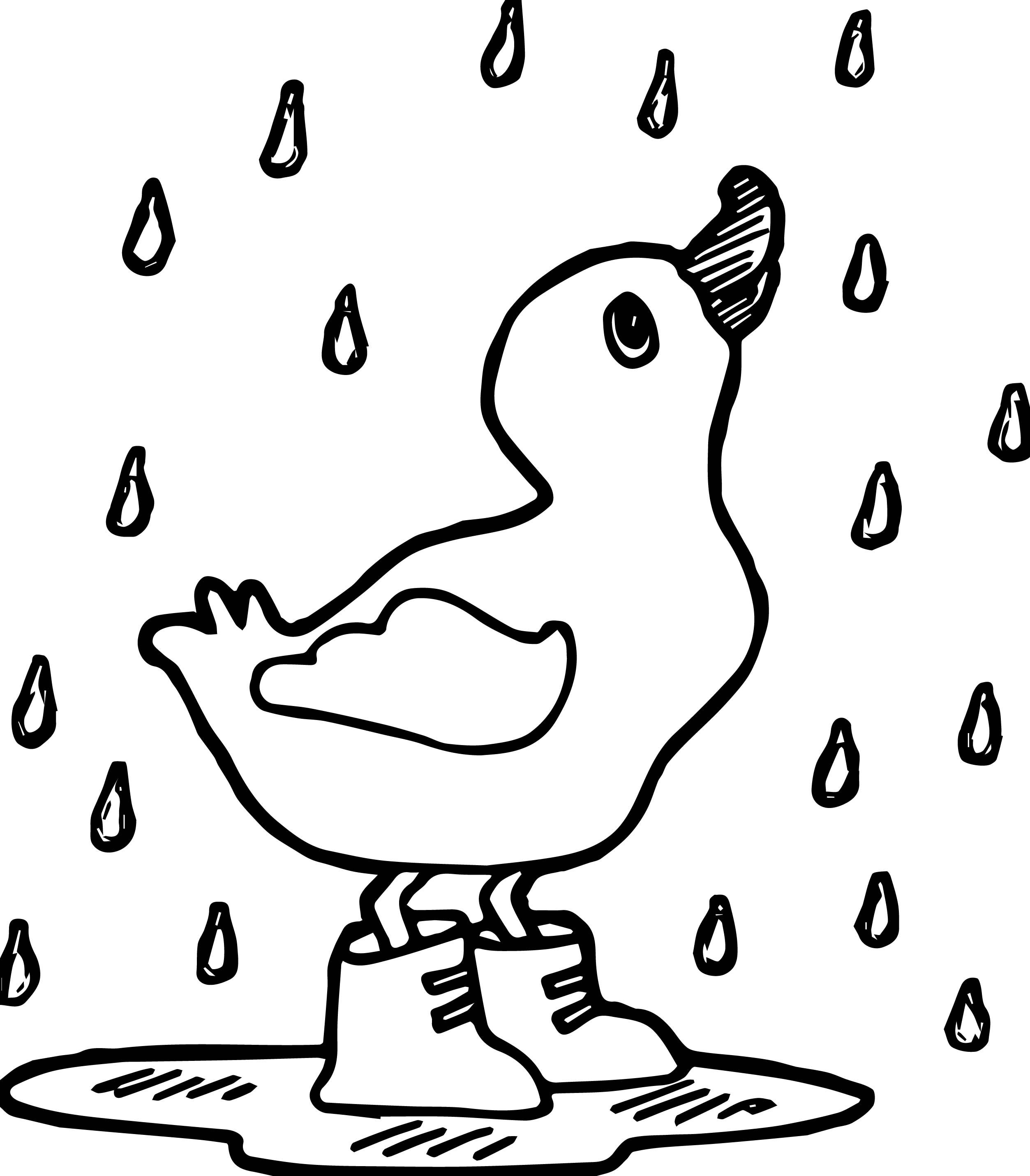 Duck Coloring Pages Easy