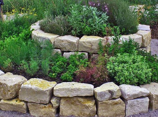 Spiral Herb Garden Designs - Google Search | Design Ideas