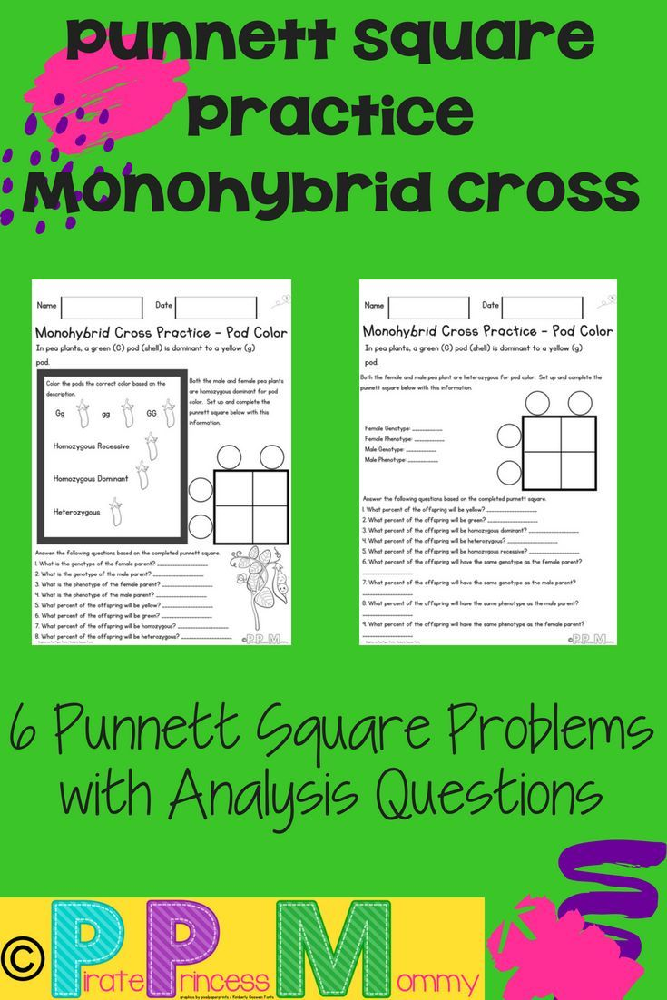 50 Square Practice Worksheet Answers in 2020