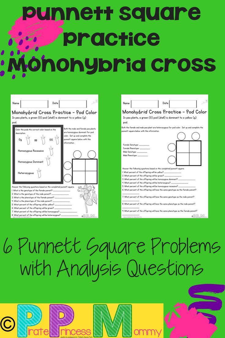 Monohybrid Cross Square Practice Pod Color Science lessons, Life science