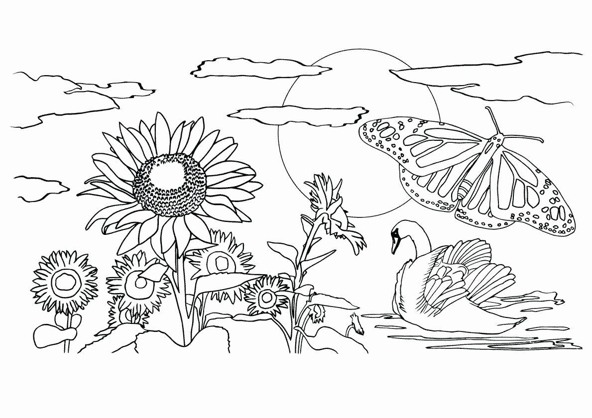 Spring Free Coloring Pages Awesome Nature Coloring Pages For Adults Pdf Awesome Coloring Page In 2020 Coloring Pages Nature Flower Coloring Pages Spring Coloring Pages