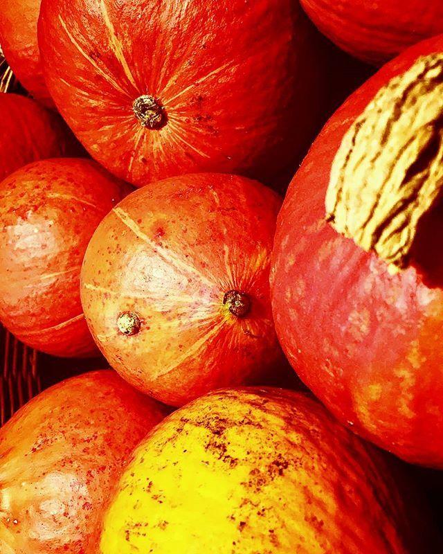 You must look on the from #god created #nature. Du musst auf die von #gott geschaffenen #natur gucken. And this looks soo #amazing. Es sieht soo #schön aus. #pumpkin #perfect for #halloween. #kürbis #perfekt für #halloween. #veganfoodporn #vegan #veganfood #healthy #healthy #gemüse #gemüsepfanne #vegetables #vegetable #vegetablesoup #gottistgut #godisgoodallthetimeandallthetimegodisgood #godislove #allah #allahuakbar #schönheit #gesundessen #gesundabnehmen #gesund  Yummery - best recipes…
