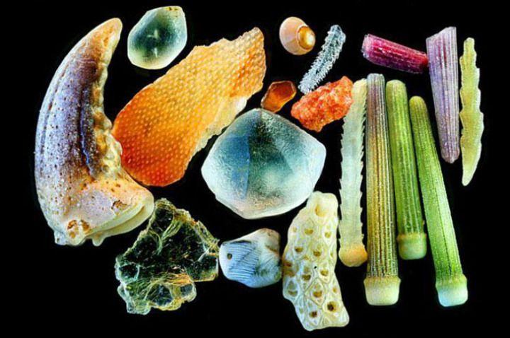Lindas fotos de grãos de areia em zoom de até 300x