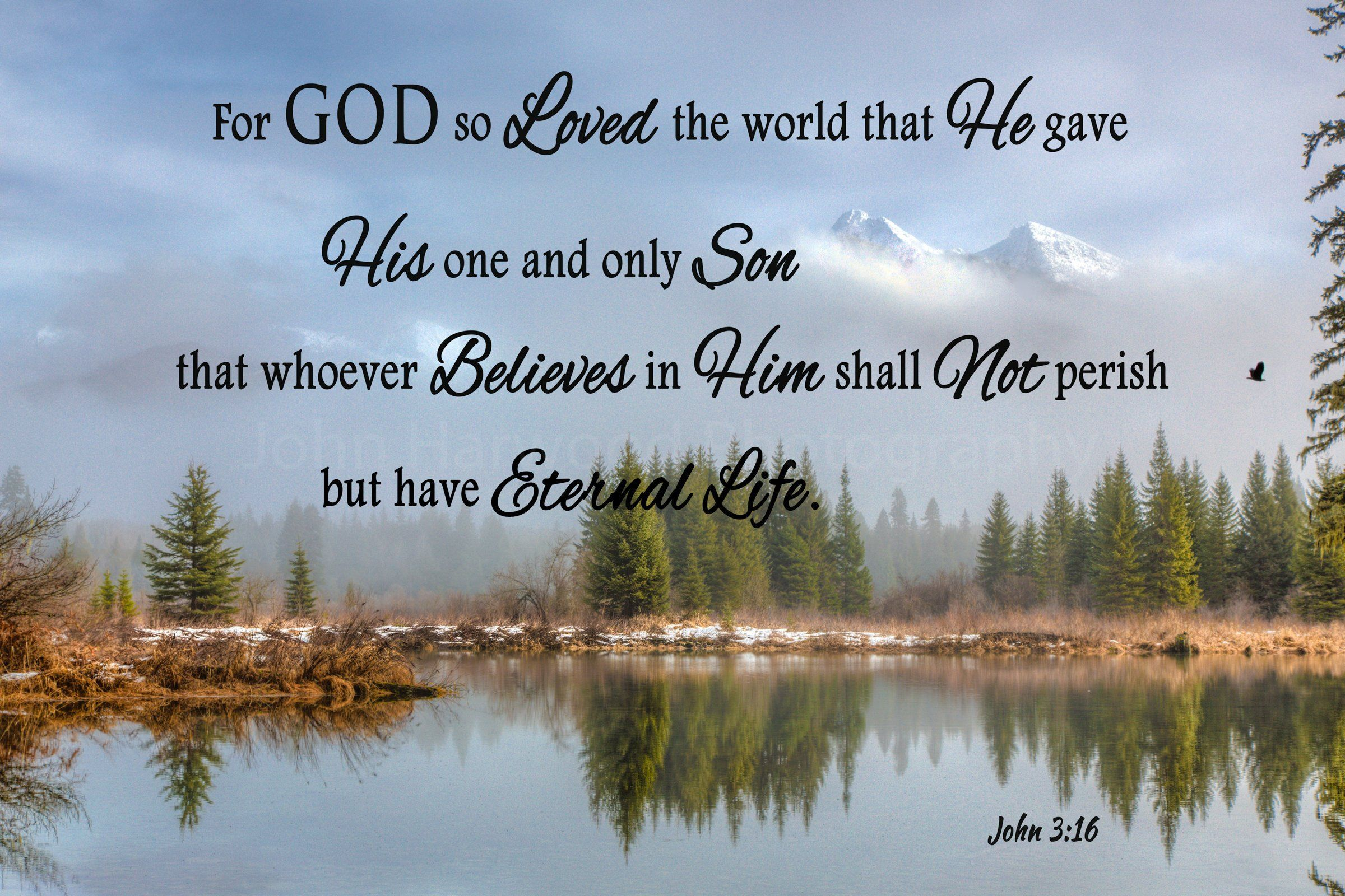 "For God So Loved The World John 3:16 4/""x6/"" Wood Saying Sign Decor"