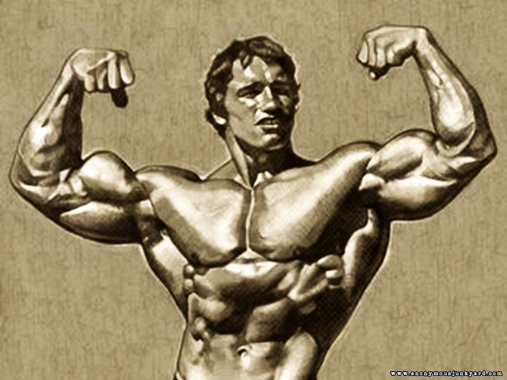 Gallery Of Arnold Bodybuilding Pictures Wallpapers Free