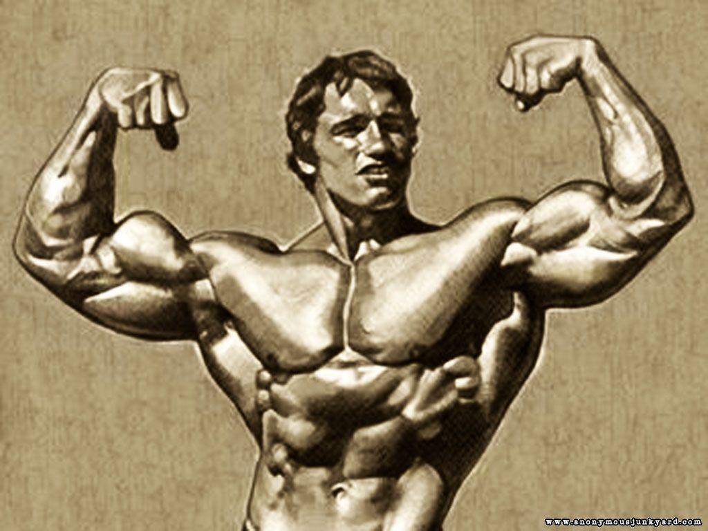 Arnold photos download