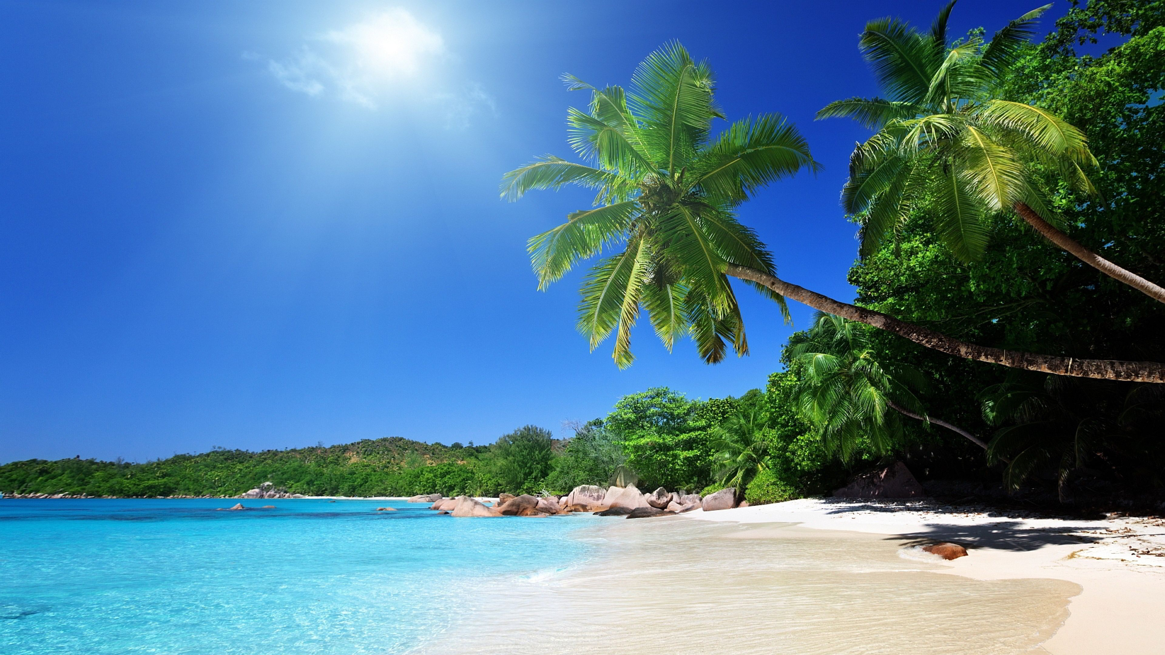Tropical Beach 4k Ultra Hd Wallpaper Uhd
