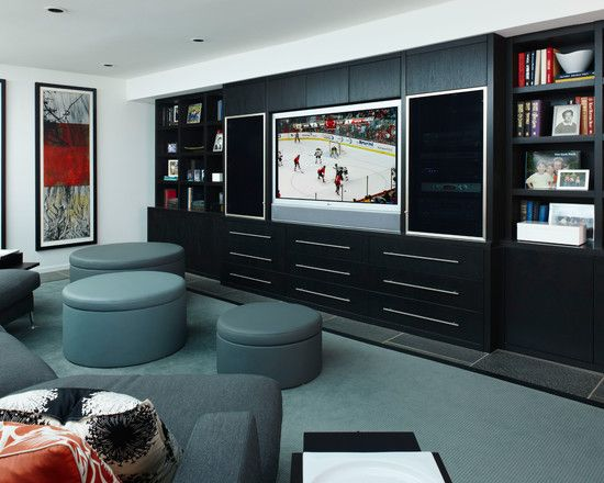 Fascinating Cool Dvd Storage Ideas for Modern Family Rooms Design