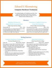 Orange Chevron  Cv Ideetjes    Professional Resume