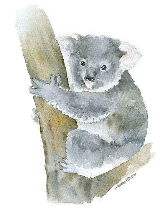 Koala Watercolor Painting 8 X 10 8 5 X 11 Giclee Print