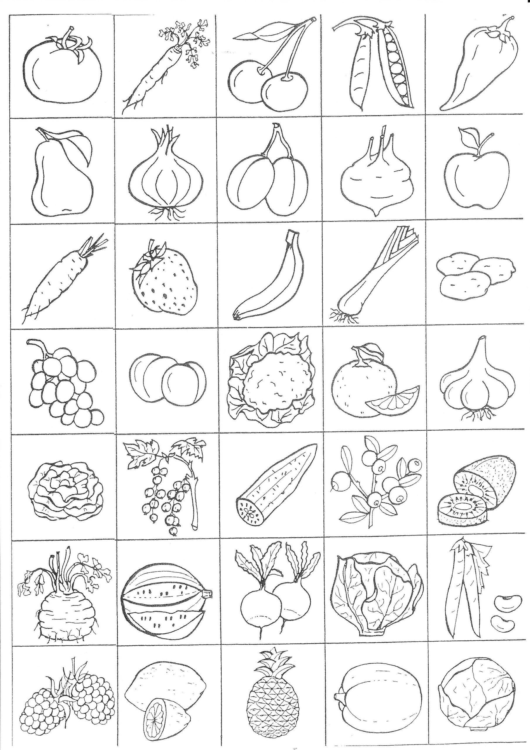 Vegetable Worksheets For Kindergarten Ovoce Zelenina